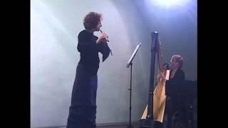 J.S.Bach: Aria sulla IV corda - flauto e arpa