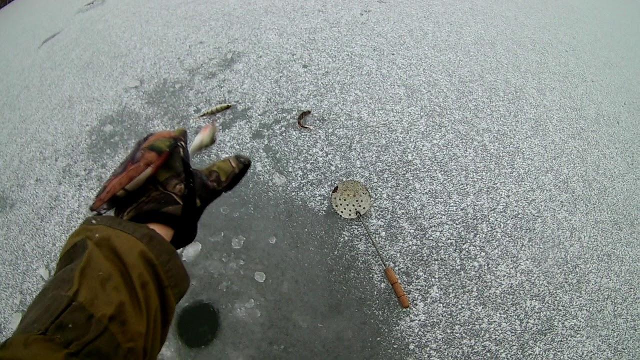 Рыбалка в верхнеяркеево на 2019 год