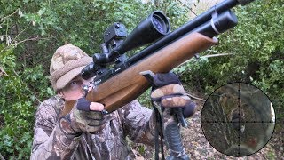 The Airgun Show - Hunting squirrels & pigeon in winter woodland, PLUS PAO Emerald GBTR scope on test