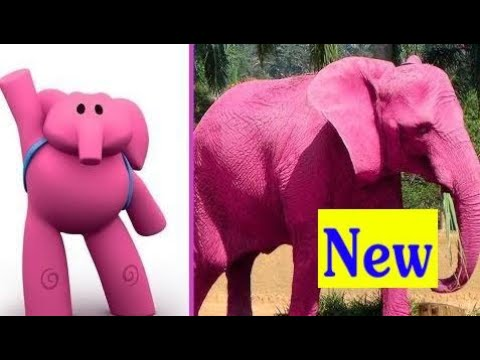 POCOYO VIDA REAL 2018  Pocoyo In Real Life For Kids  ‹ Gutley ›  Kids
