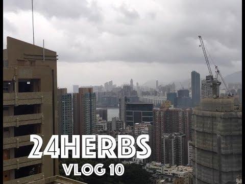 24Herbs Vlog 10 Typhoon Signal 10 in Hong Kong