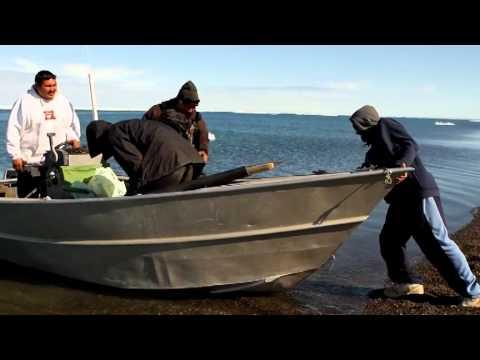 SBTN - HÀNH TRÌNH XUYÊN MỸ P2: Alaska (tiếp theo)