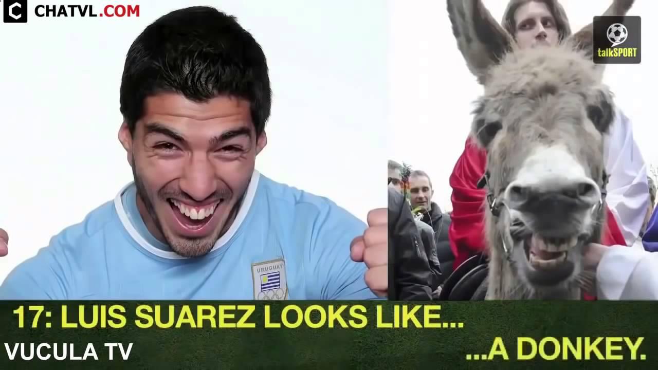 Best footbal players's face same animal    Funny Football   Soccer