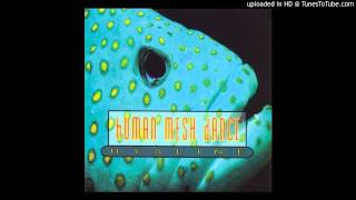 Human Mesh Dance - Moonflower