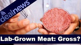 Your $0.02 - Lab Grown Burgers: Still Gross?