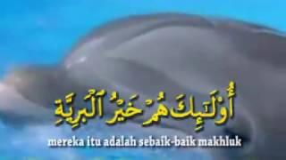 Suara Merdu! Anak Mengaji Al Quran Surah AL BAYYINAH - Muhammad Thoha Al Junayd