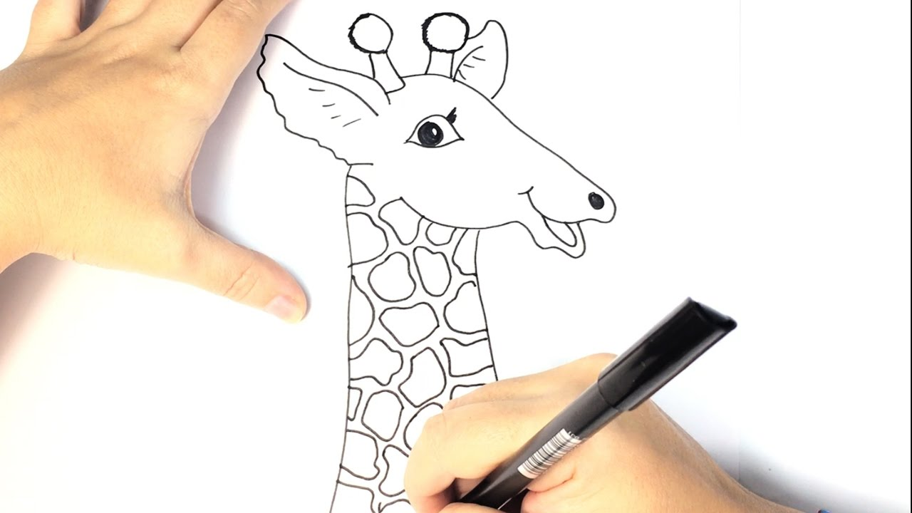 how to draw a giraffe for kids youtube