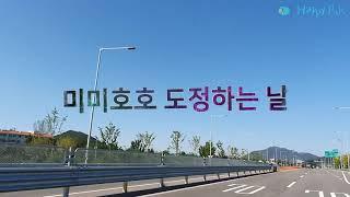 미미호호 강화도쌀 강화섬쌀 교동쌀 도정 인증 영상(흑미…