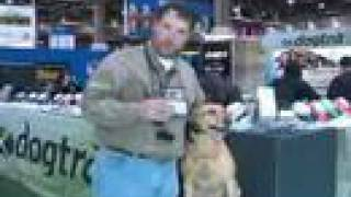 Fitting An Electronic Training Collar By Justin Tackett