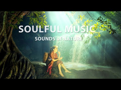 Музыка природы. Звуки природы. Душевная музыка