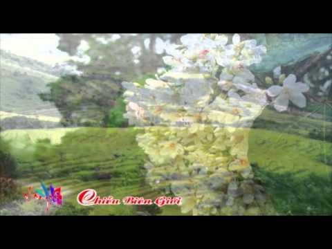 Đẹp & Lạ : Cảnh đẹp chiều Bình Liêu, Quảng Ninh