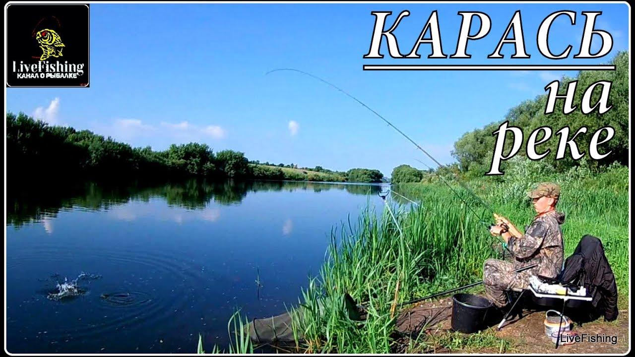 отчет о рыбалке на реке свирь