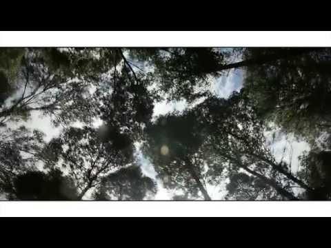 INOCENTE AMOR MC BLACK FT ANDREA CORTES.. OFFICIAL VIDEO HD