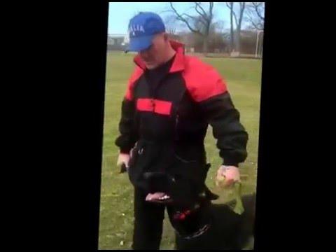 Mike Harrington - Hanyo von Mack-Zwinger - IPO/Schutzhund BH Preparation - 6 weeks out.