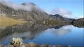 yo vivo por la montana Ginkobiloba