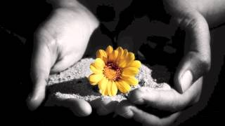 El privilegio de dar (Ednita Nazario)