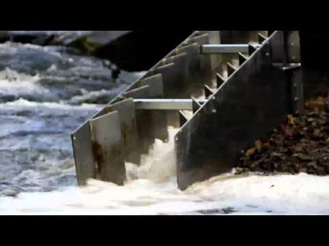 Tetstill Weir Fish Pass