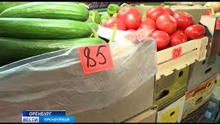 Оренбургские налоговики во время рейдов десятками выявляют теневых предпринимателей