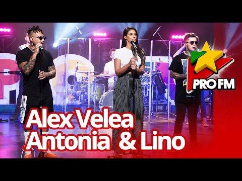 Alex Velea feat. Antonia & Lino – Sahara  | ProFM LIVE Session