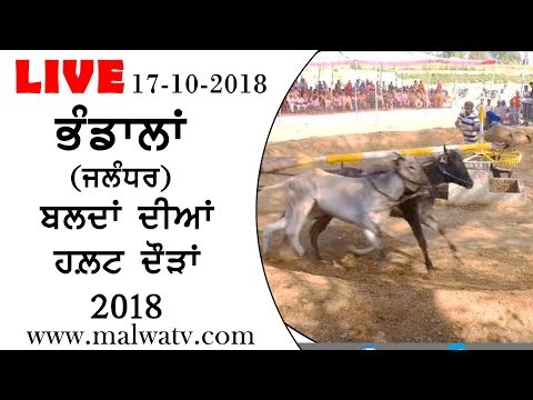 BHANDALA (Jalandhar) OX HALT RACES - 2018 || LIVE STREAMED VIDEO