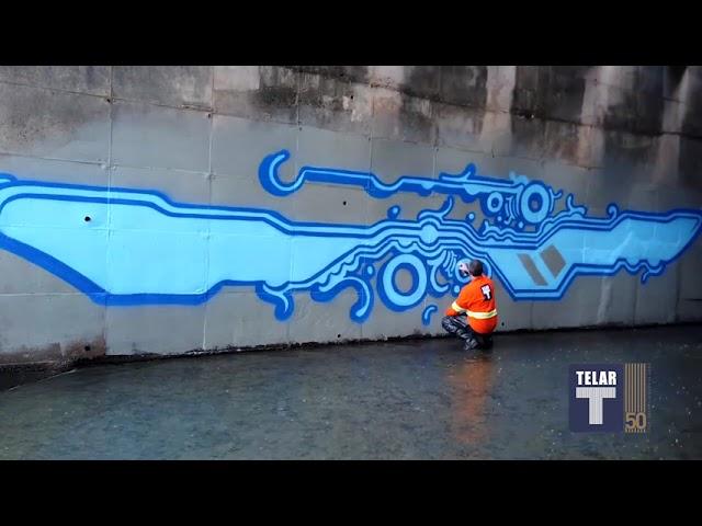 Arte Urbana • Zezão no Córrego Anhanguera