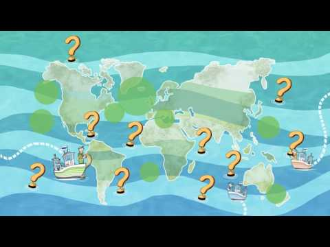 What does the MSC label mean? | 1. Sustainable fish stocks