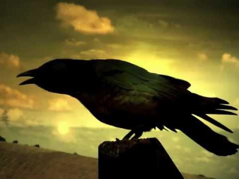 Песня Любе - Чёрный Ворон (русская народная песня) в mp3 320kbps