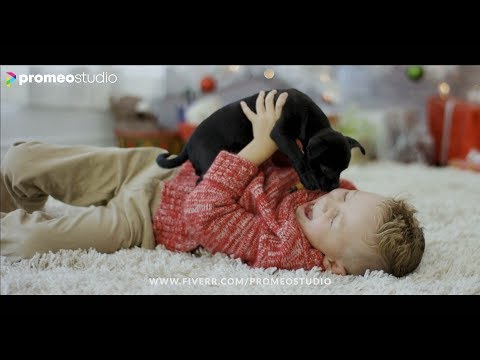 PETS LOVE | #VideoAds For #Facebook #Instagram #Youtube #Exclusive On #Fiverr