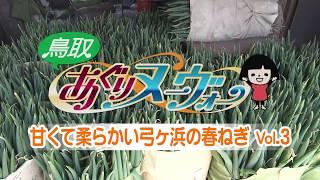 米子市の弓ヶ浜で白ねぎを栽培している若手生産者の児山公洋さん。家族...