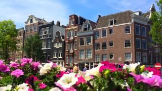 Amsterdam | Амстердам. Красные фонари, секс шопы, цветы | Little Lily
