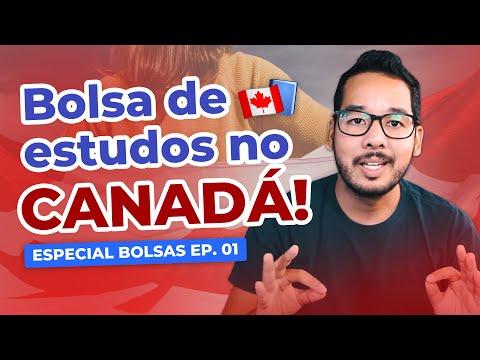 Bolsa De Estudos No Canadá! ESPECIAL BOLSAS EP. 01   Matheus Tomoto