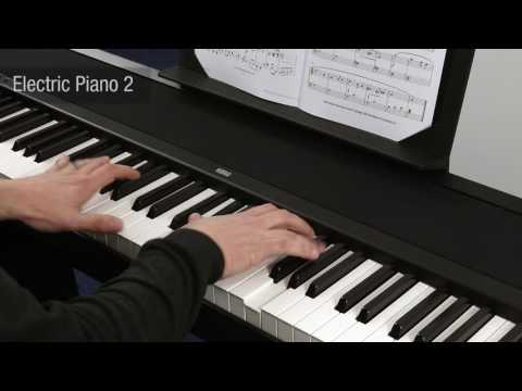 KORG B1SP Digital Piano Narrated Overview