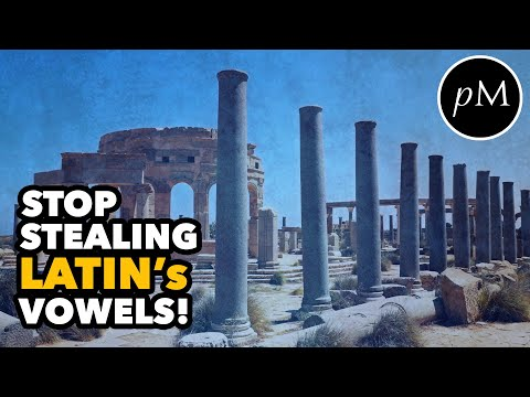 stop-stealing-latin's-vowels!-why-are-long-vowels-so-important-in-latin?