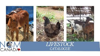 NCMC - Livestock (English)
