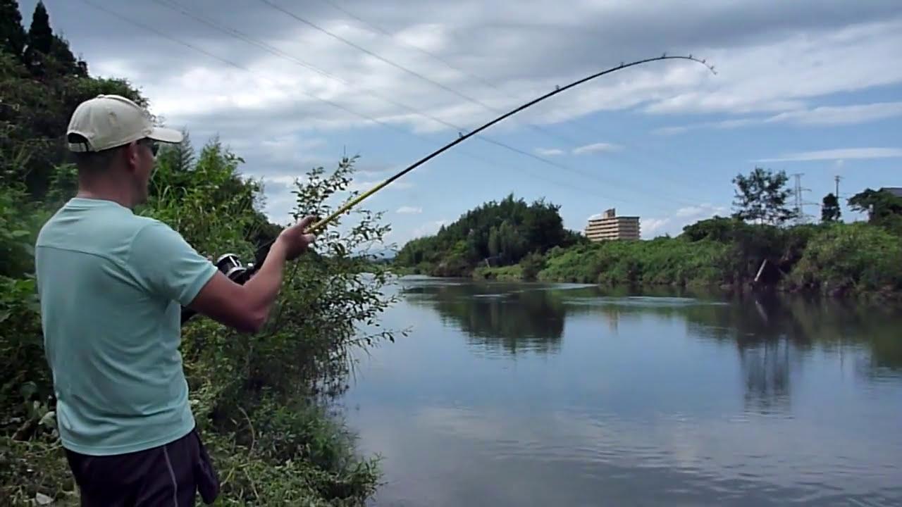 Carp fishing in Tsubo River(...