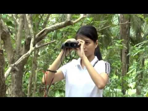 Philippines National Forest Inventory