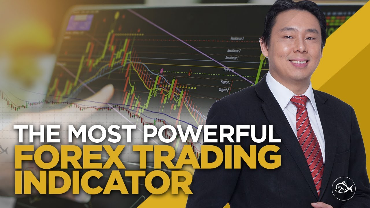 Adam khoo forex course
