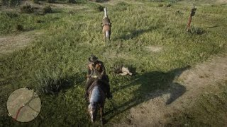 Red Dead Redemption 2 - Horse kick to the face