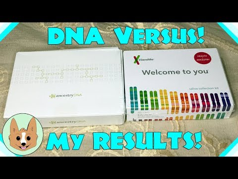 Results Comparison - AncestryDNA vs 23andMe - Genetic DNA Te