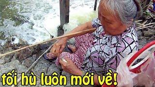 Bà Lão câu cá Rô Phi khi nào cái Phao hết giựt giựt thì mới về / Fishing