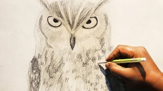 How To Draw An Owl Using Pencil | Owl Sketch Time Lapse | Realistic Owl Drawing Step By Step