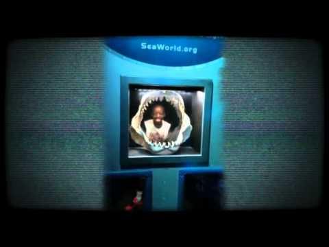 SeaWorld - 5th Grade Crookshank Elementary School 5.13.14