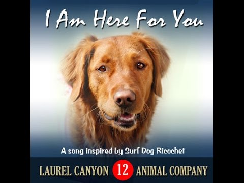 My Soul Song: I am Here for You by Surf Dog Ricochet