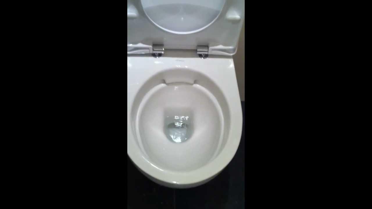 Sphinx Rimfree Toilet : Sphinx rim free toilet mov youtube