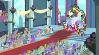 Ракосельская Пони Свадьба