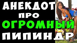 АНЕКДОТ про Огромный Пипиндр и Нерешительного Парня и Сестру Подруги Самые Смешные Свежие Анекдоты