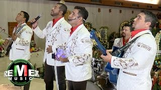 Los Liricos Jr. - La guadalupana (Serenata a la virgen de Guadalupe)