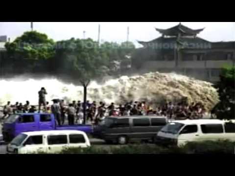 Экологические катастрофы скачать видео