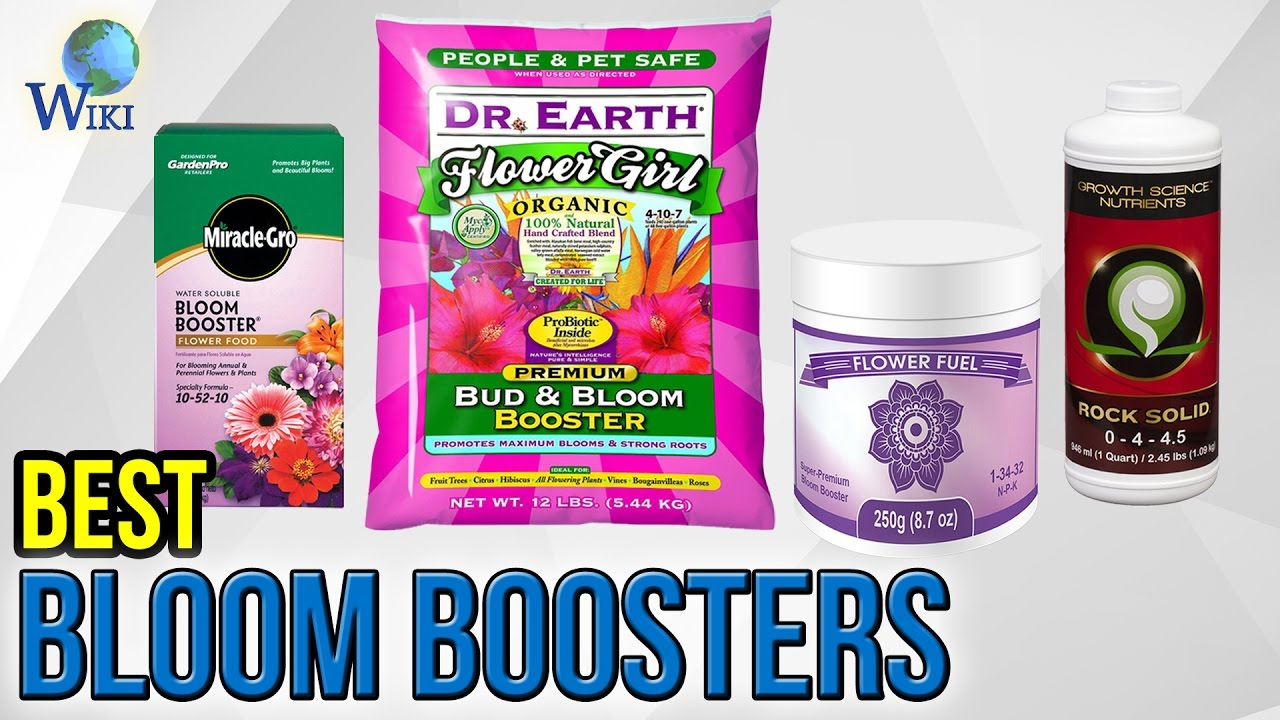 10 Best Bloom Boosters 2017