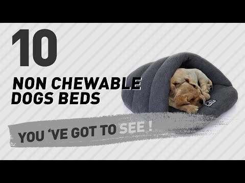Non Chewable Dogs Beds // Pets Lover Channel Presents: